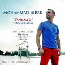 متن آهنگ تنهام 2 محمد بیباک و نادیا